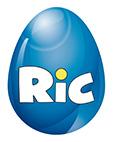 RiC-Logo-NEU_klein